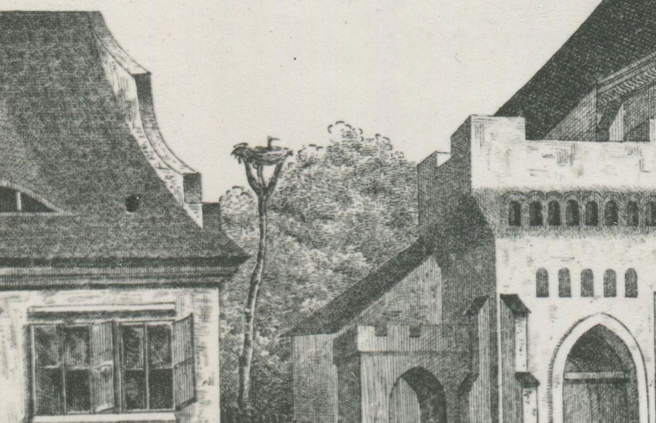 Kościół Kórnik stara rycina gniazdo bociana