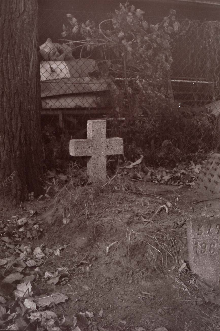 Cmentarz Kórnik - 2