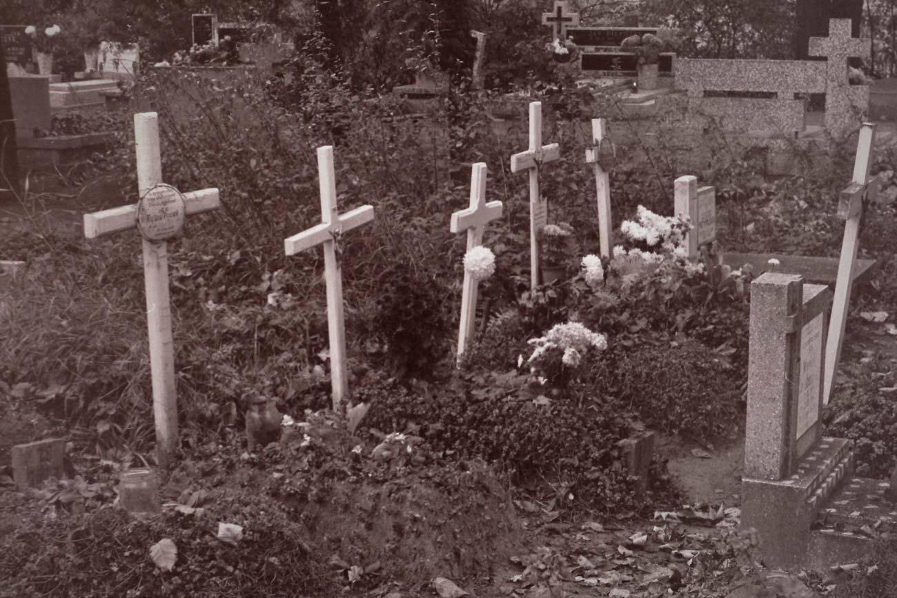 Cmentarz Kórnik - 4