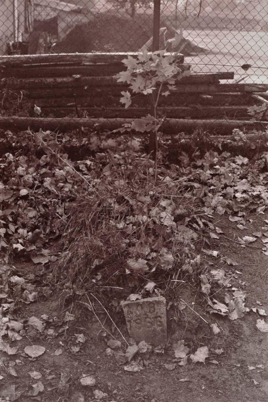 Cmentarz Kórnik - 6