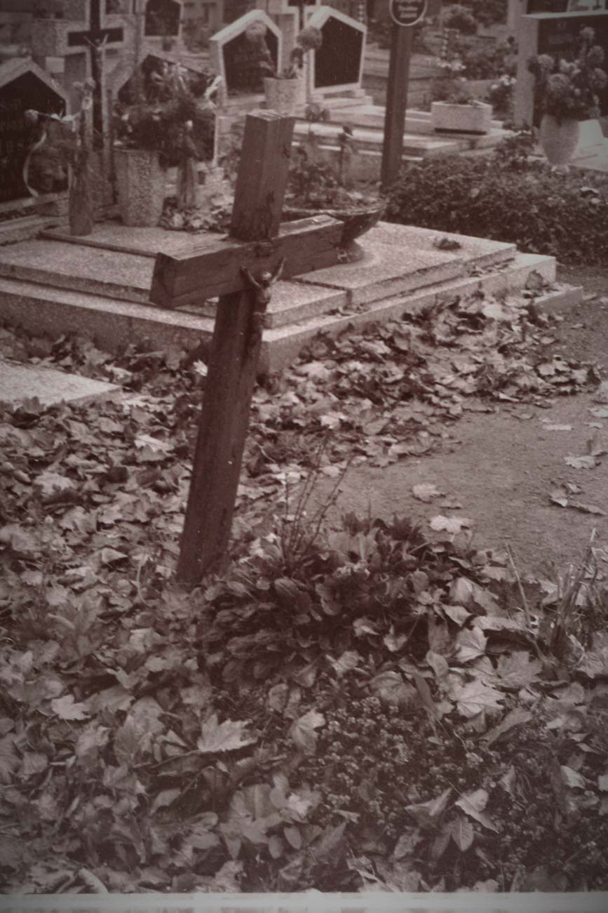 Cmentarz Kórnik - 9