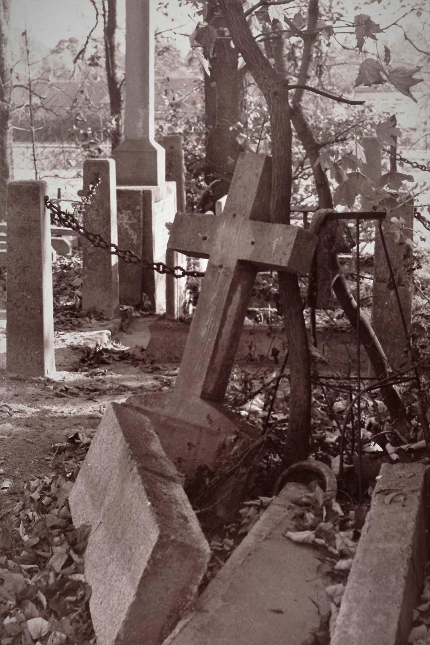 Cmentarz Kórnik - 10