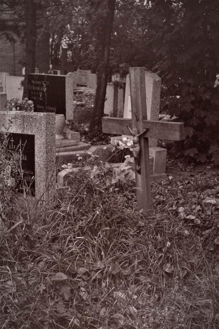 Cmentarz Kórnik - 12