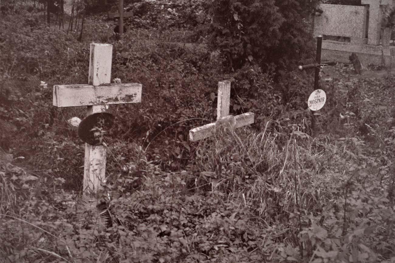 Cmentarz Kórnik - 13
