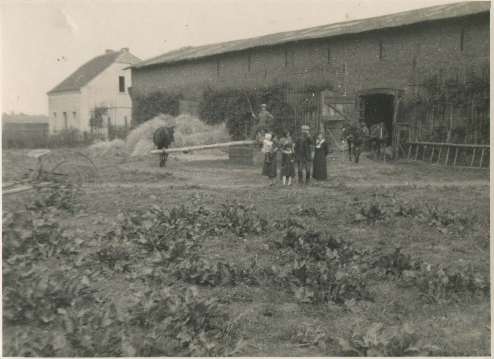 Kórnickie stodoły